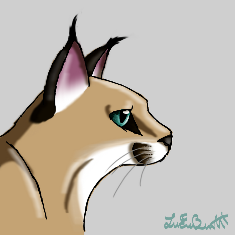 Caracal Drawing - View...