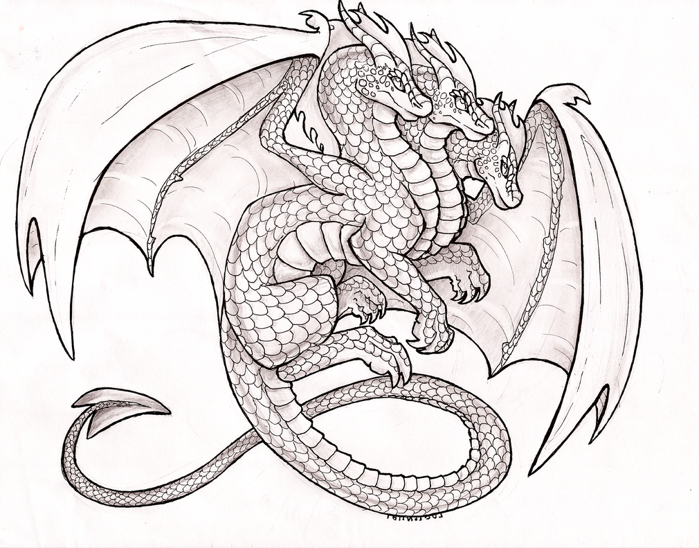 Dragon City Coloring Pages Sketch Coloring Page: Hydra Dragon Coloring Pages Printable Coloring Pages