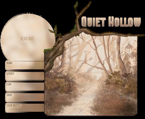 Quiet Hollow // Application Com