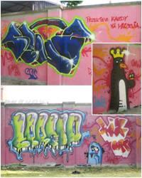 lizARTS Wall