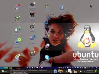 Ubuntu.Mynameismo.screencap by paradigm-shifting