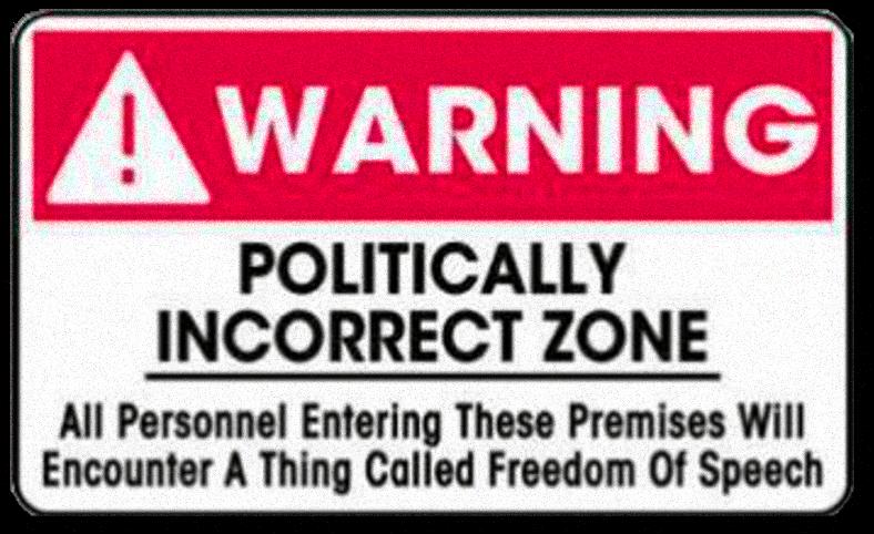 Politically Incorrect Freedom Zone by paradigm-shifting