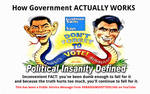 Political Insanity Defined