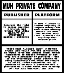 Muh Private Company EXPLAINED by paradigm-shifting