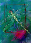 Dragonfly Gift by zyphryus