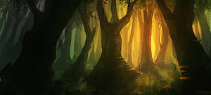 another forest...