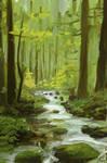 forest photostudy