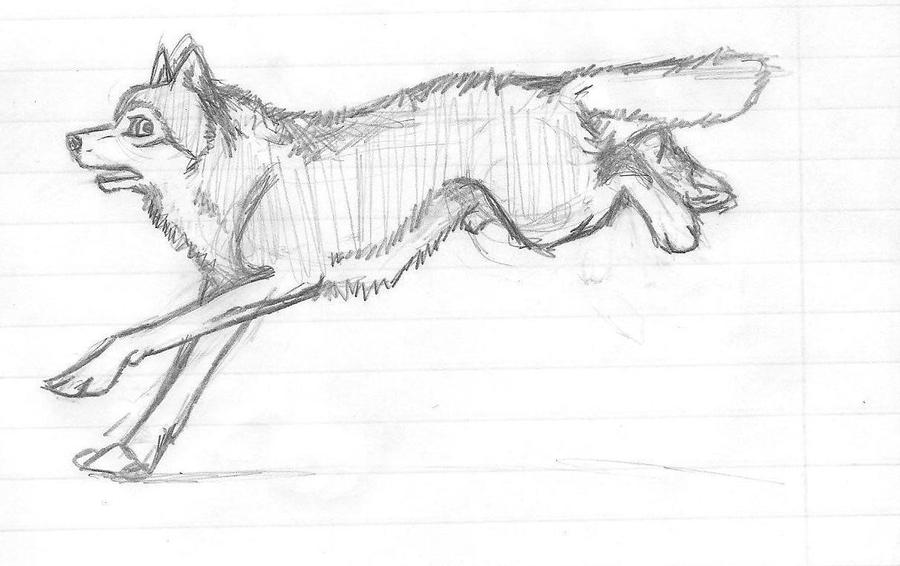 Wolf warrior drawing