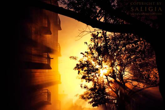 dawn in the city by JuliaDunin