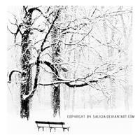 winter solitude by JuliaDunin
