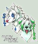 CS: Sit and Frozi : by GaruryKai