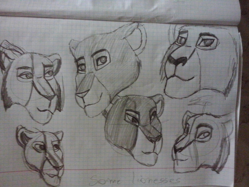 some_lionesses_by_korrontea-d85p9hj.jpg