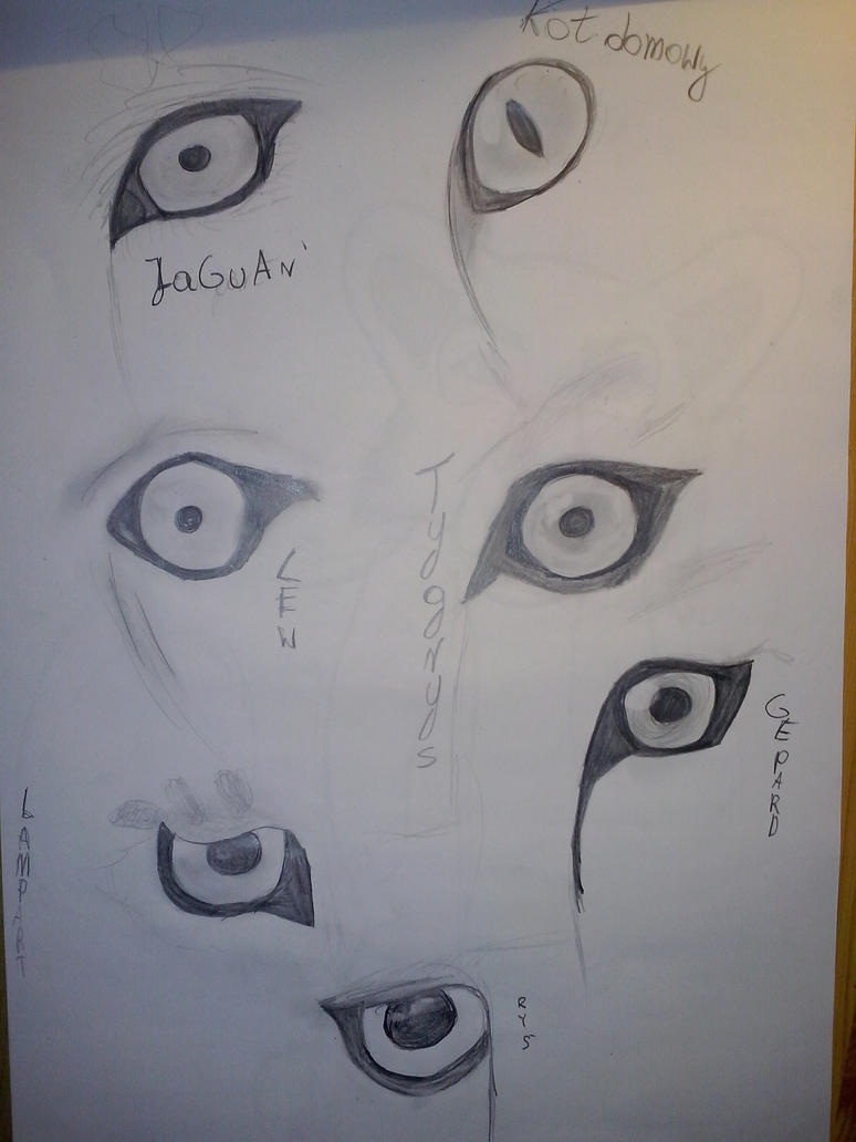eyes_by_korrontea-d86ijg5.jpg