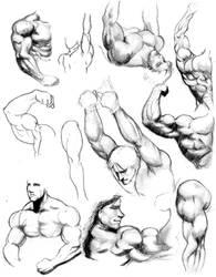 Anatomy by SamDelaTorre