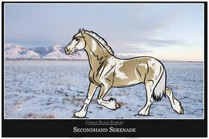 705 CBS Secondhand Serenade by kryptooxx