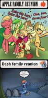 Pony family reunions