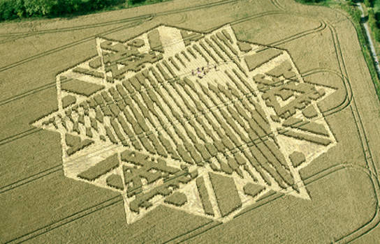 Crop Circle Message From The Stars.