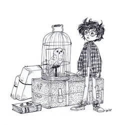 Harry Potter And Owl