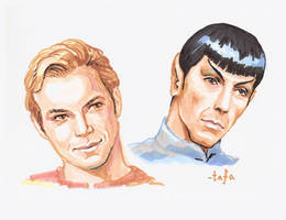 Kirk and Spock, markers by tafafa