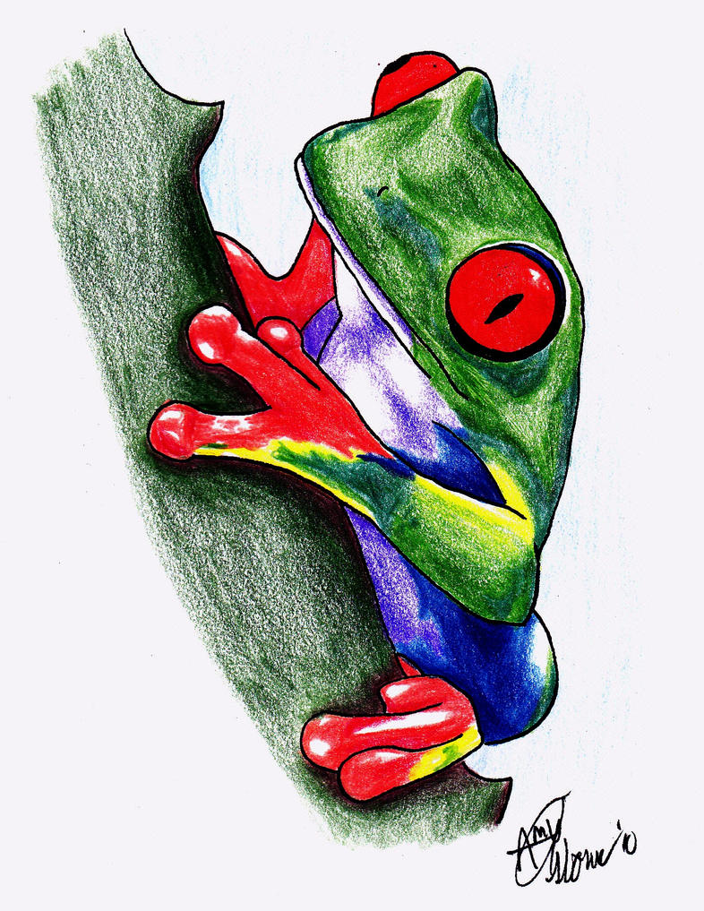 Tattoo images by dorothy alexander for Celtic frog tattoo designs