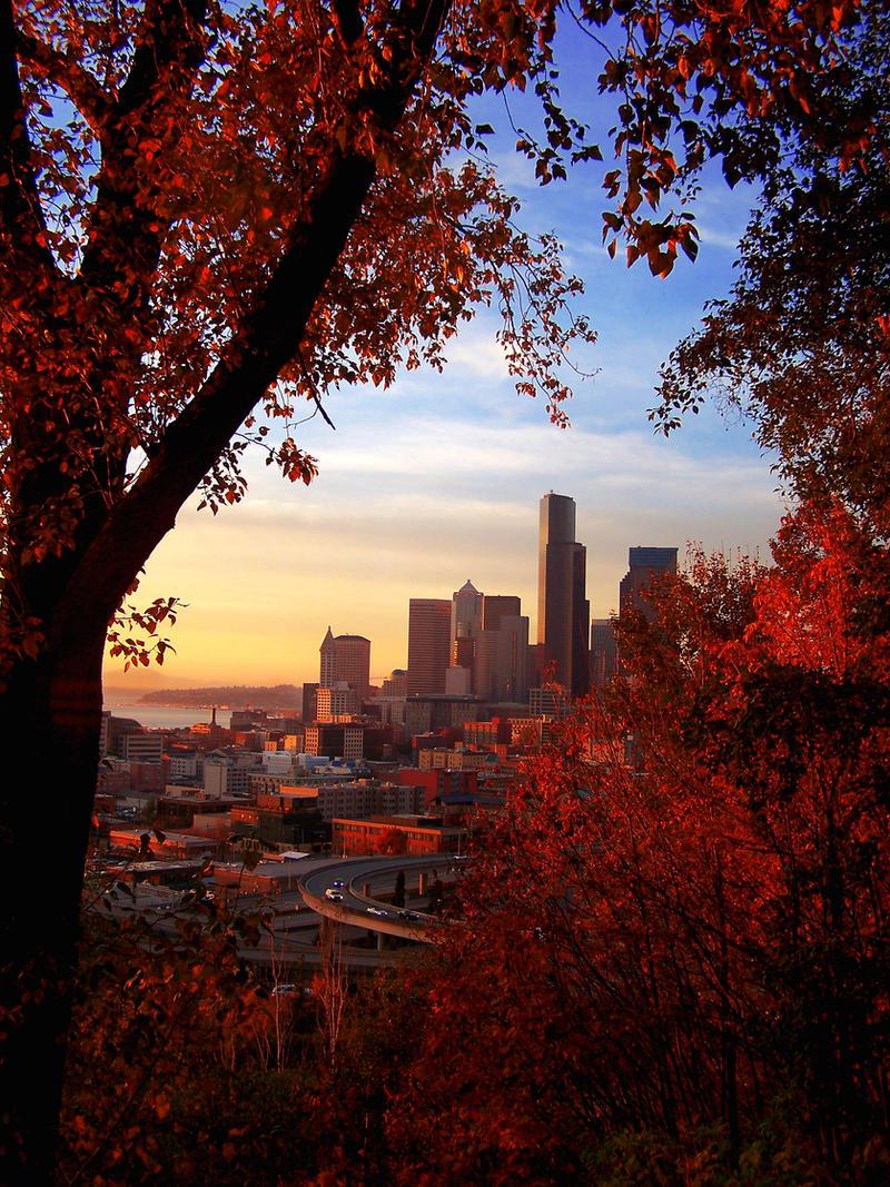 Seattle Through Autumn by princesse-cupcake