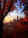 Seattle Through Autumn