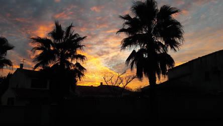 ombres palmiers  by DreamyLunarFox
