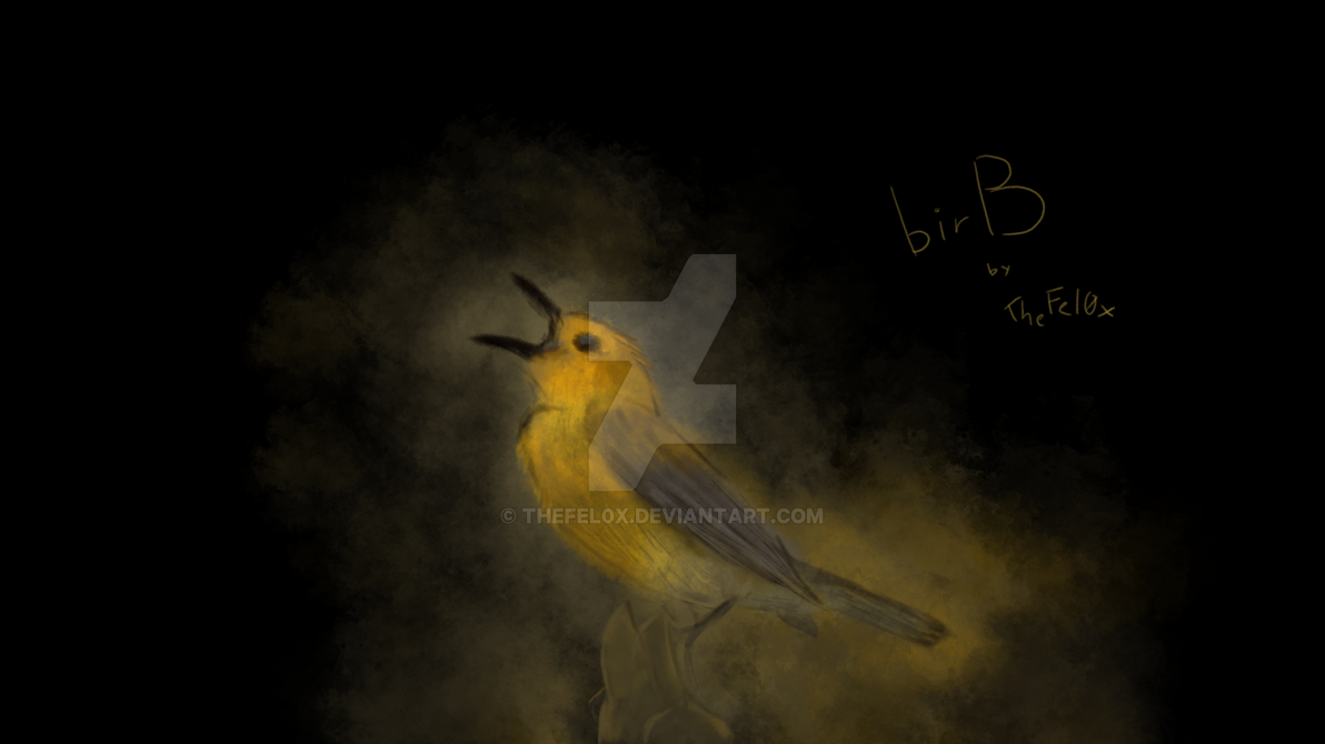 birB.pic by TheFel0x
