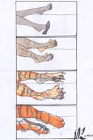 Tiger Feet rescan