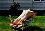 ADITLOD: Dave Sunbathes