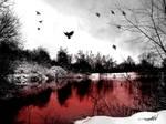 Bloody dream
