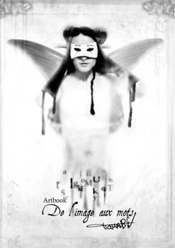 artbook De l'image aux mots