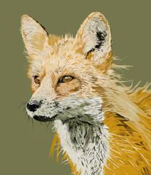 Fox by Umbaca