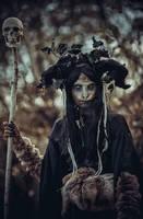 Dark Forest by elenasamko