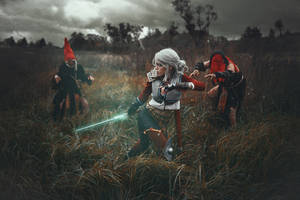 Ciri meet Sisters The Witcher 3 Cosplay by elenasamko
