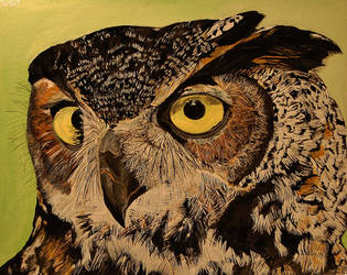 Great Horned Owl by Mararda