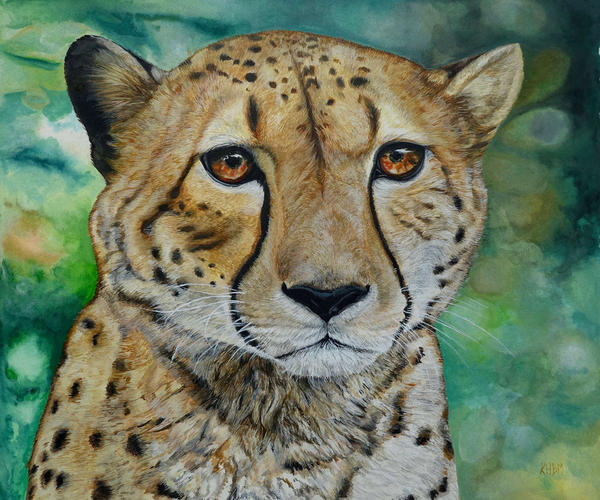 Cheetah by Mararda