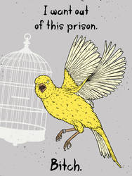 The Angry Canary by gargoyl3