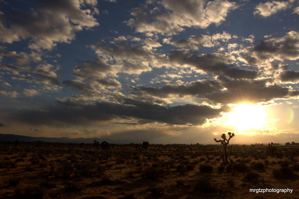 winter high desert by MrGutierrez