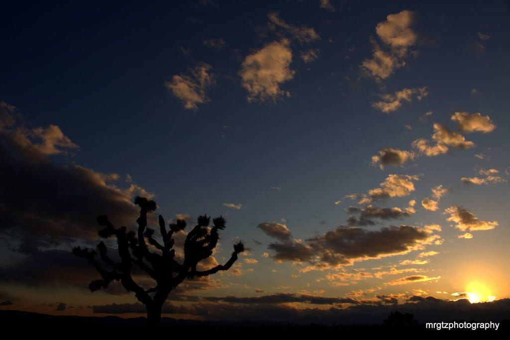 just another day in the high desert by MrGutierrez