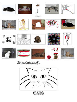 21 Variations of Cats