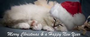 christmas cuddle by amigaboi