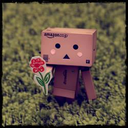 danboard brings you a flower by sadangel