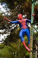 The Amazing spiderman by LordJoker88