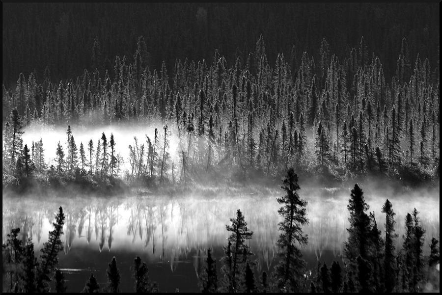 Mist at Dawn by eyernwill