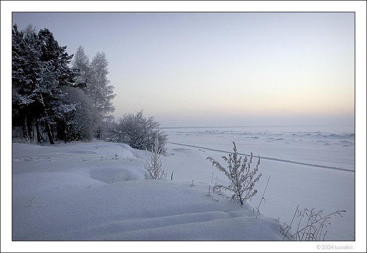 cold day by kovalvs