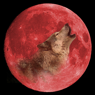 howling at the red moon by blackwolf91 on deviantart