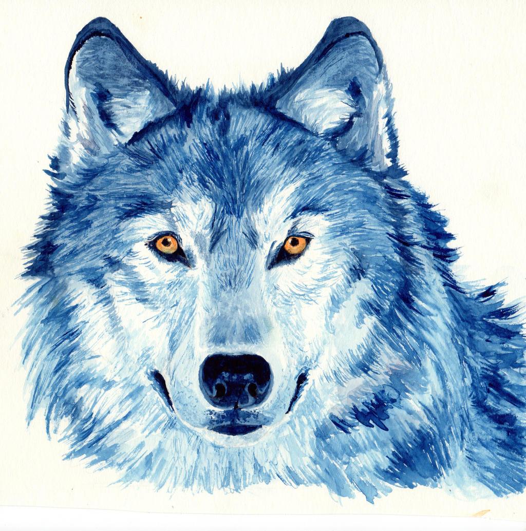 Werewolf Cat Video