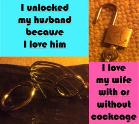 Unlocked-my-husband-love-my-wife by deviantfemale007
