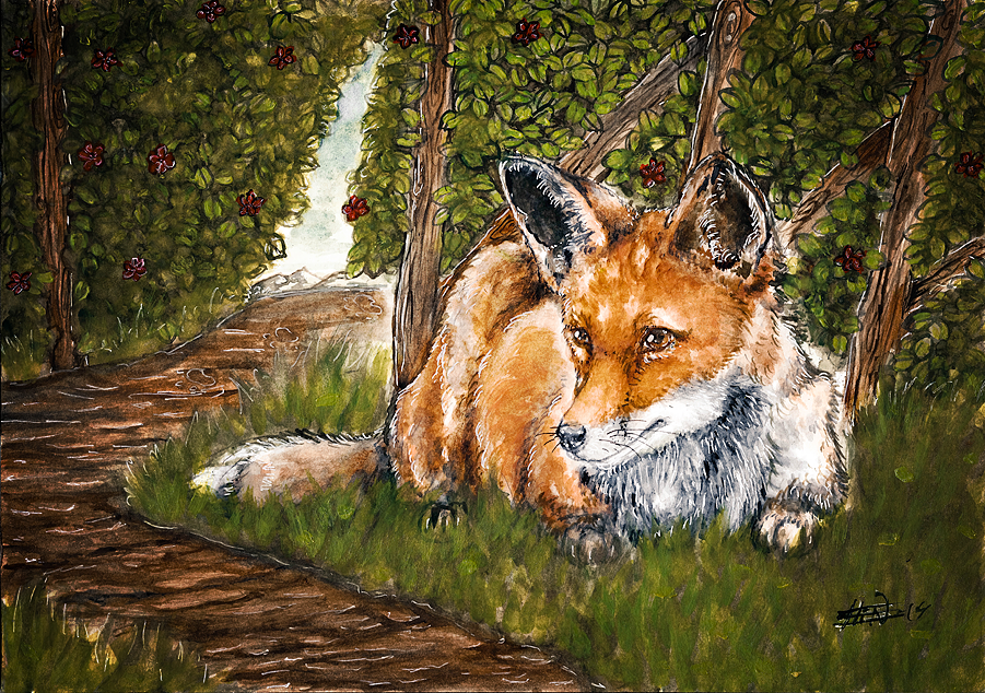 Fox by S1ghtly